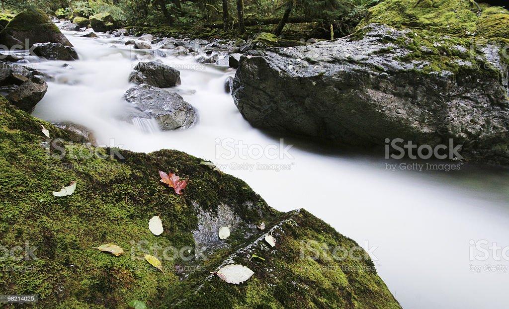 Wet Silk royalty-free stock photo