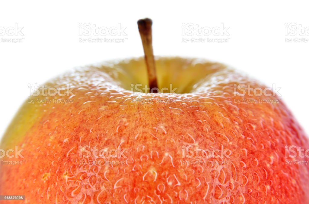 Wet, sliced apples isolated on white background stock photo