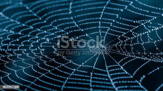 Beautiful harmonic texture from the spider web with water drops on a dark night background with a mysterious blue glow. Artistic cobweb