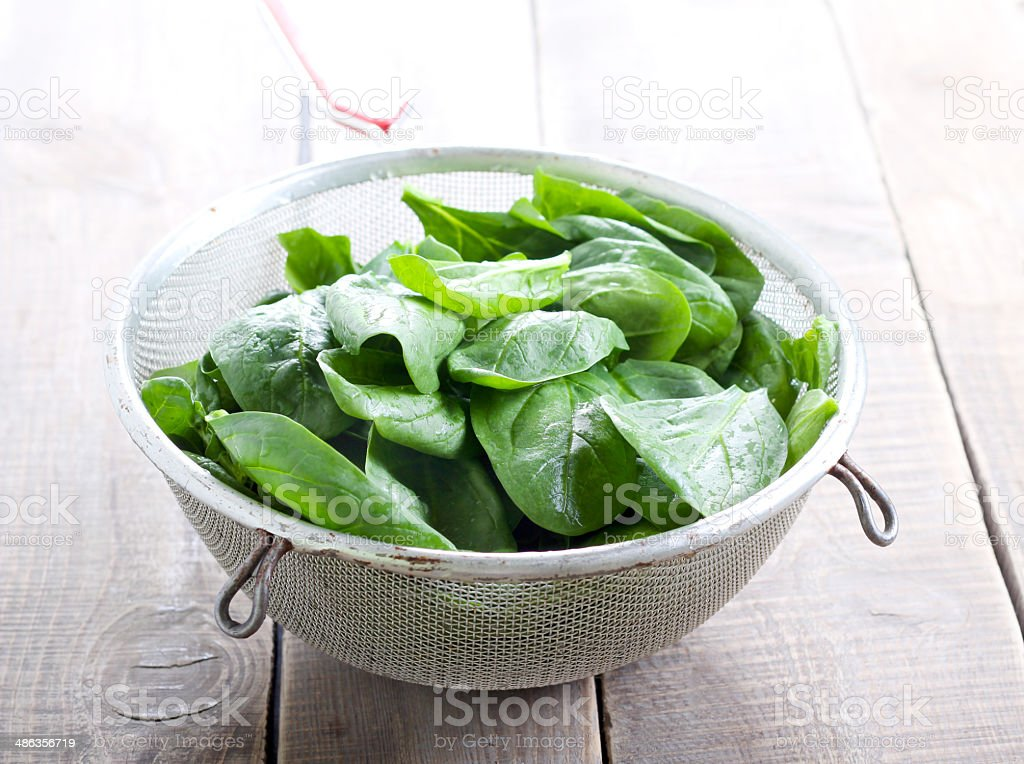 Wet spinach stock photo