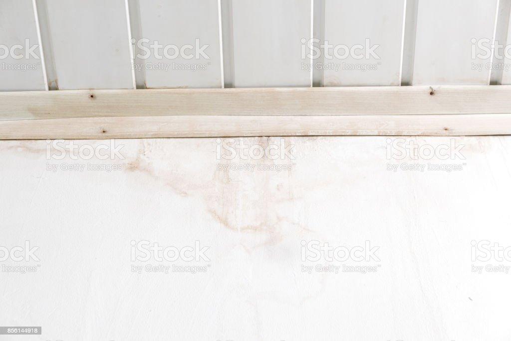 Nassen Fleck Auf Der Weissen Wand In Der Toilette Stock Fotografie