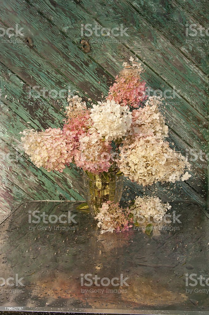 wet still life royalty-free stock photo