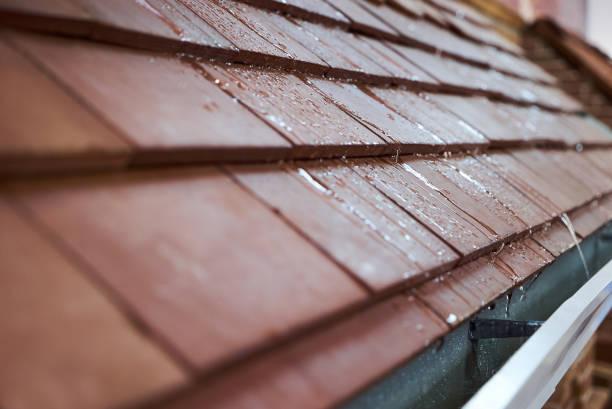 房子的濕瓦屋頂,特寫。現代瓷磚屋頂圖像檔