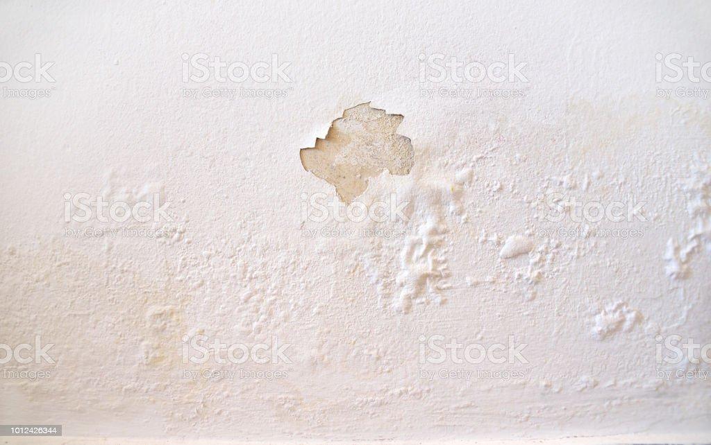 wet wall white stock photo