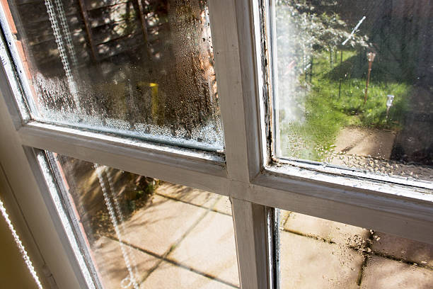wet window - condensation stock photos and pictures