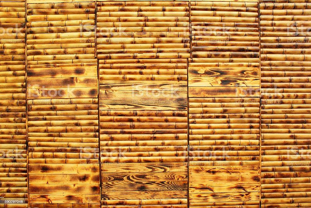 Wet yellow bamboo wall background royaltyfri bildbanksbilder