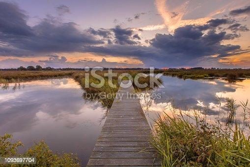 Wooden wetland footbridge as concept for challenging situation in nature reserve de Onlanden near Groningen, Netherlands