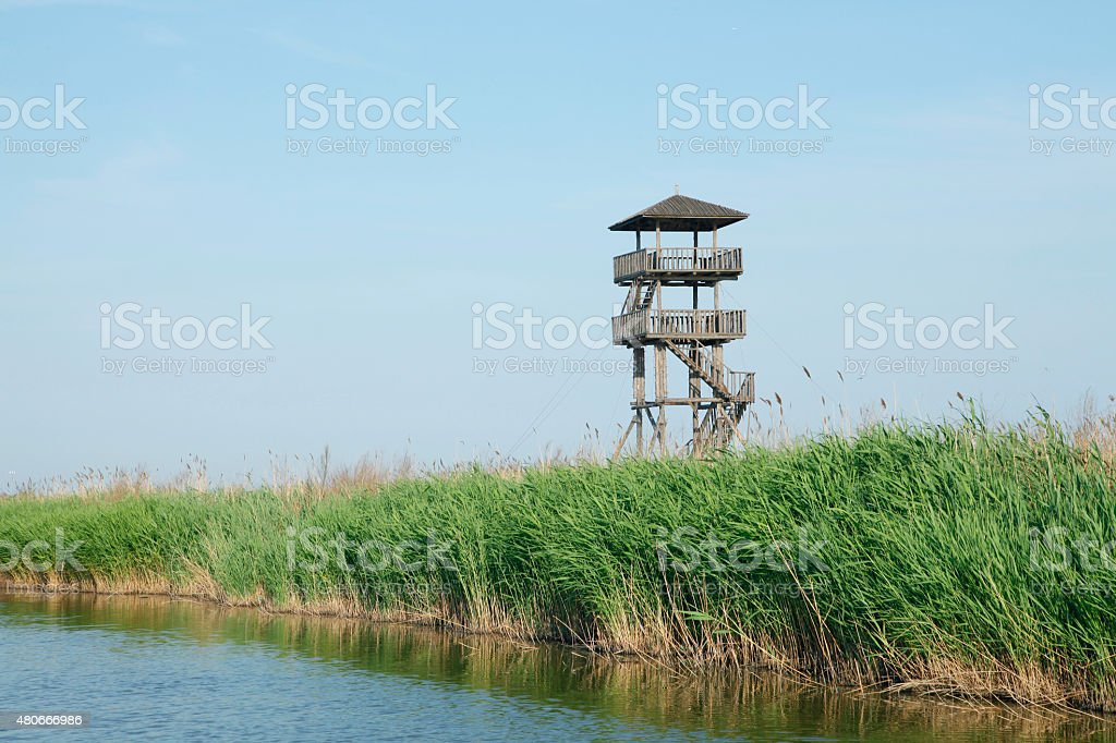 Wetland park to watch tower stock photo