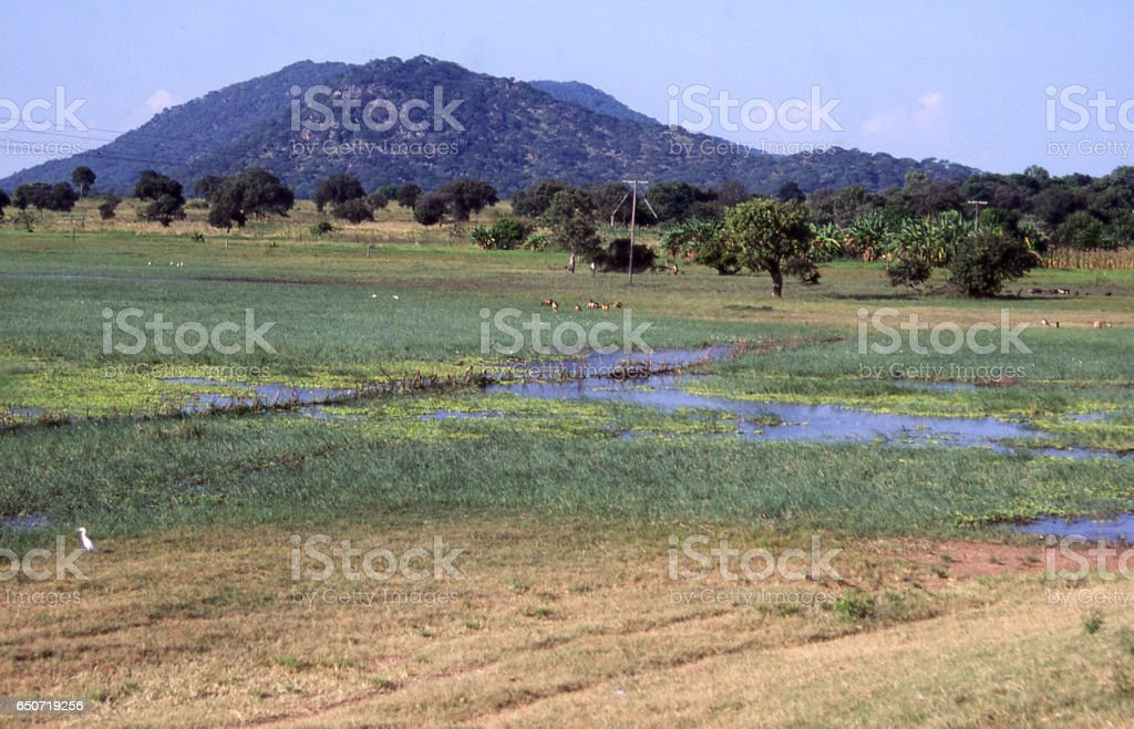 Wetlands and fields with outcropping hills in distance near Salima Lake Malawi Africa stock photo