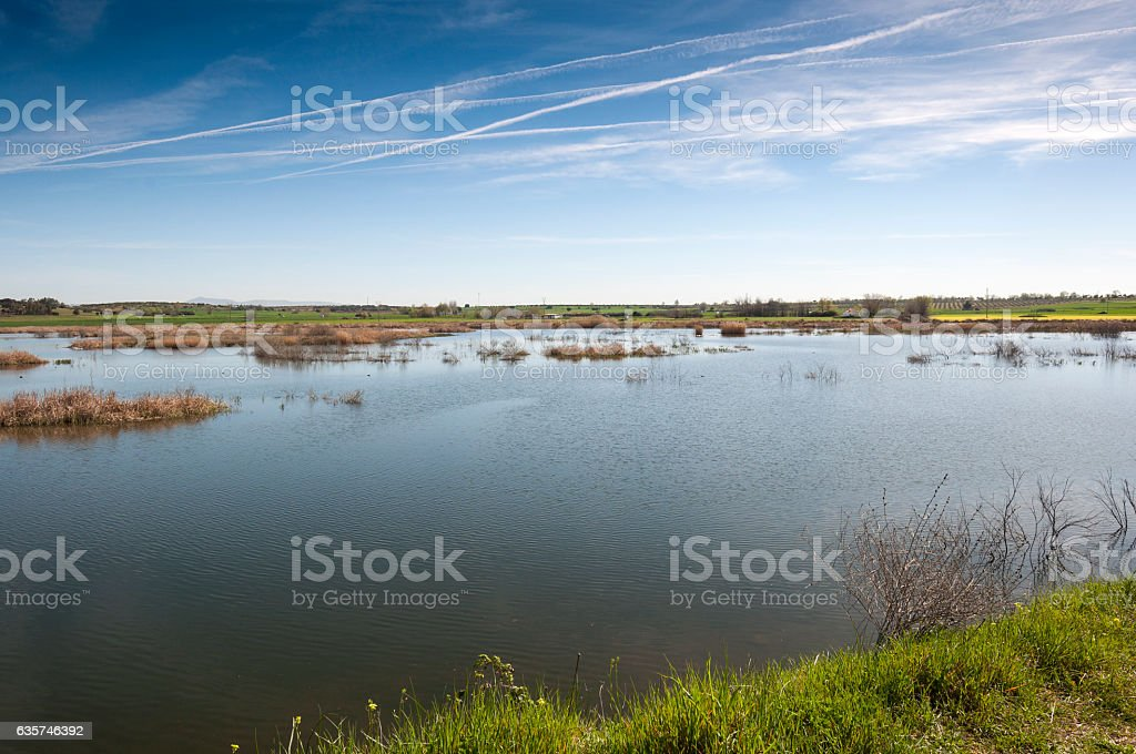 Wetlands associated with de River Guadiana, Spain stock photo
