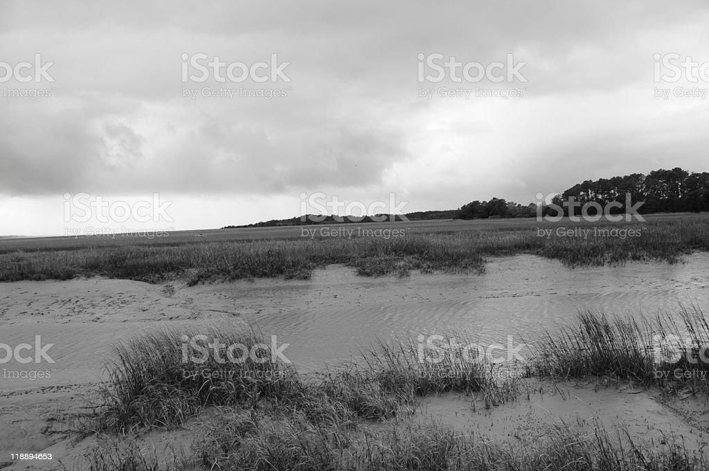 Wetlands at Low Tide stock photo