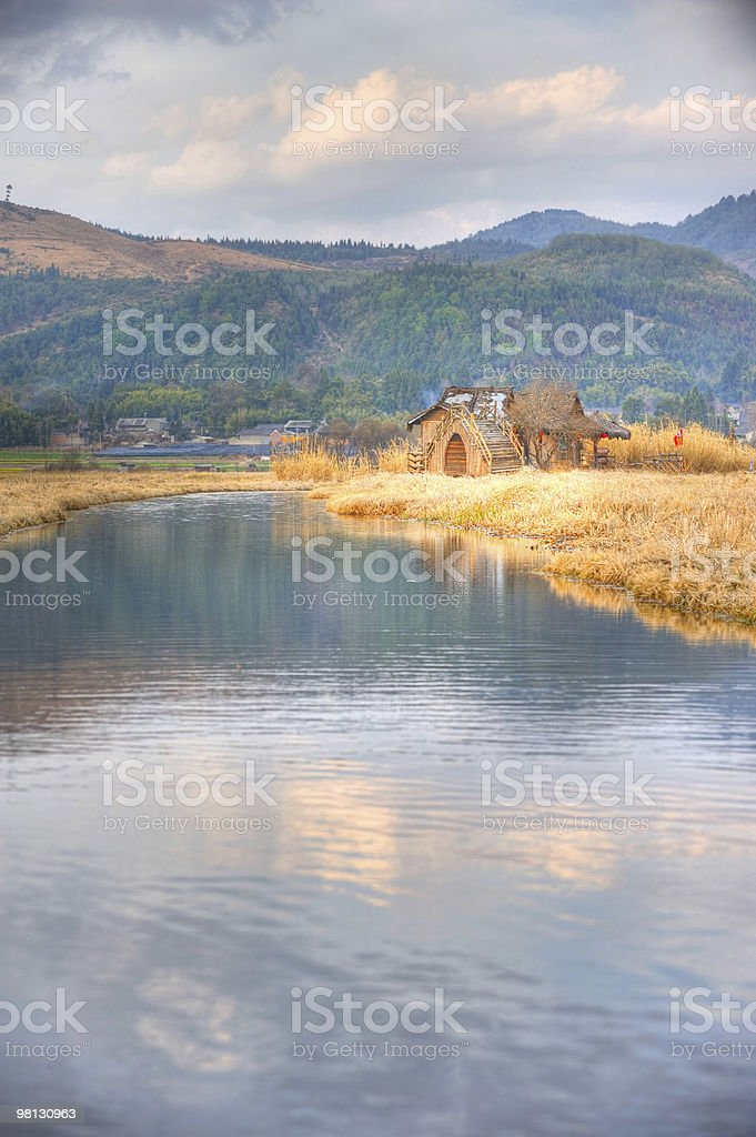 Wetlands grass in autumn royalty-free stock photo
