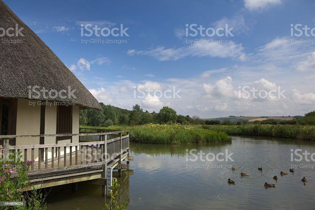 Wetlands Nature Reserve, Arundel, West Sussex stock photo