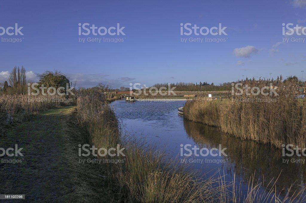 wetlands royalty-free stock photo