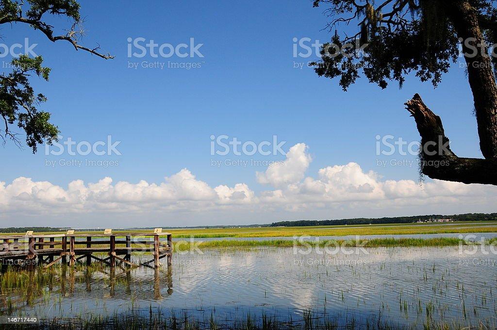 Wetlands Preserve royalty-free stock photo
