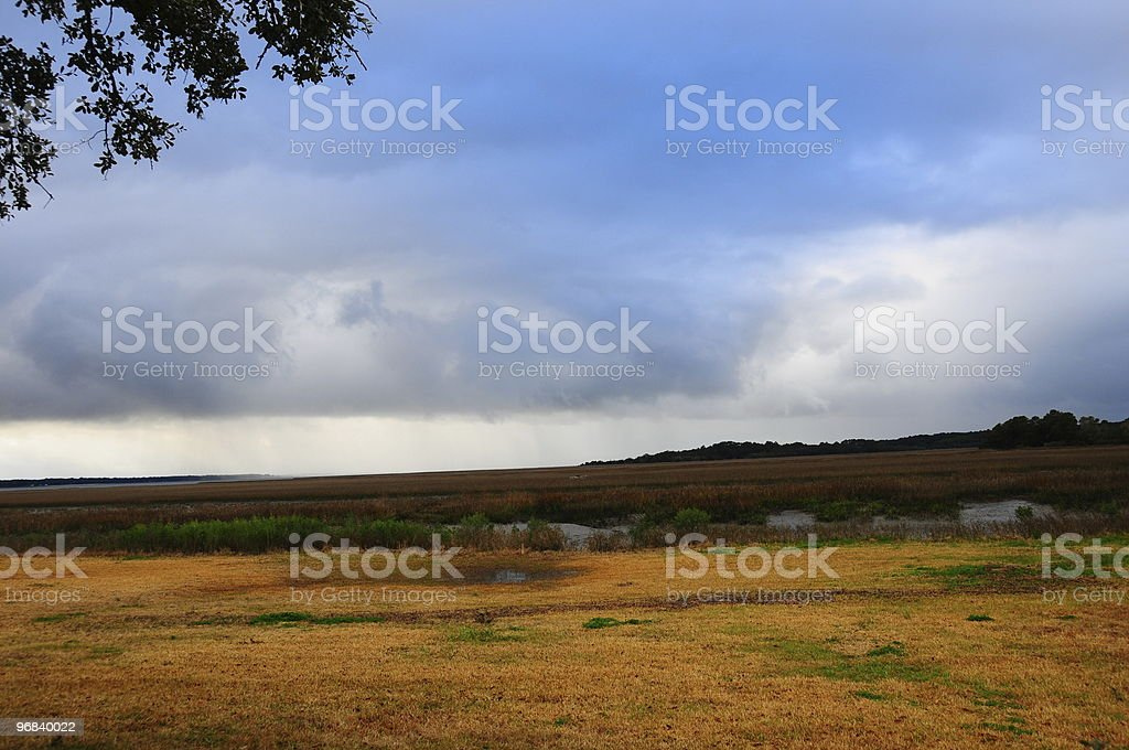 Wetlands View stock photo