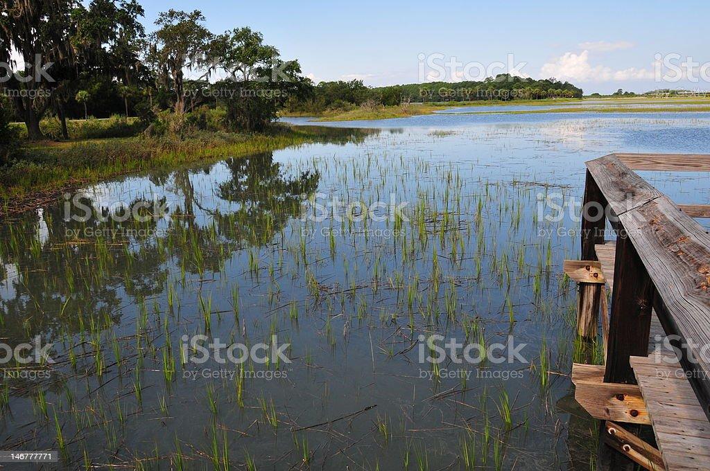 Wetlands Wildlife Preserve stock photo