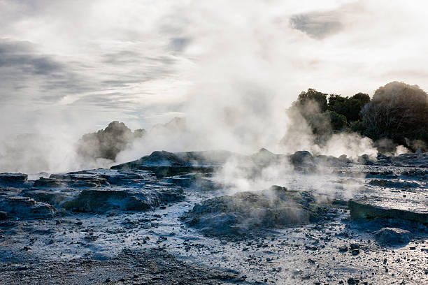 Whakarewarewa Thermal Park in Rotorua, New Zealand Steam through the landscape from the fumaroles, geysers and hot springs of Whakarewarewa Thermal Park in Rotorua, New Zealand. whakarewarewa stock pictures, royalty-free photos & images