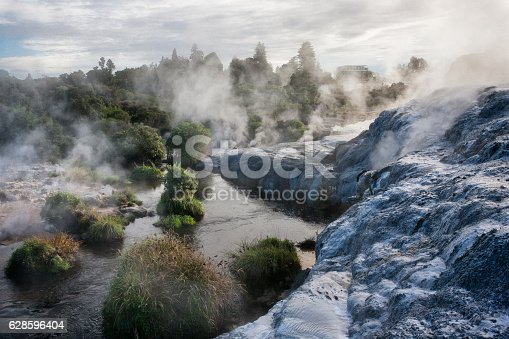 Steam through the landscape from the fumaroles, geysers and hot springs of Whakarewarewa Thermal Park in Rotorua, New Zealand.