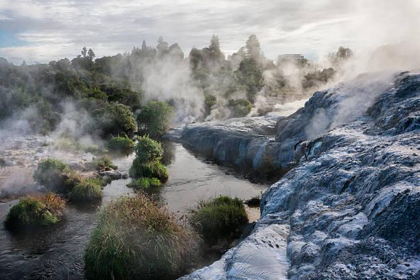 Whakarewarewa Thermal Park in Rotorua, New Zealand Steam through the landscape from the fumaroles, geysers and hot springs of Whakarewarewa Thermal Park in Rotorua, New Zealand. rotorua stock pictures, royalty-free photos & images