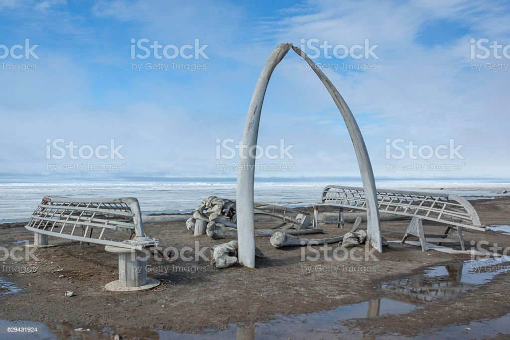 Whale Bone Arch in Barrow, Alaska stock photo