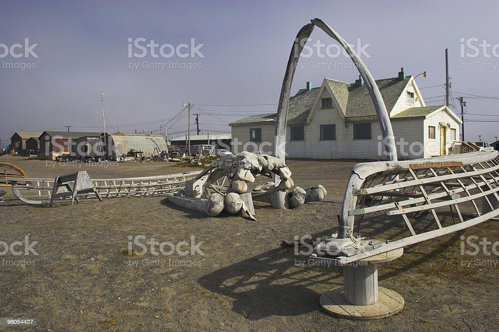 Whale bones royalty-free stock photo