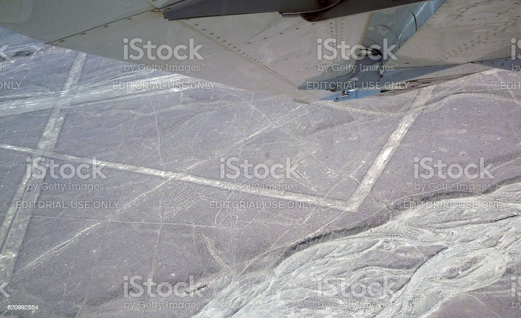 Whale figure in the Nazca Lines stock photo