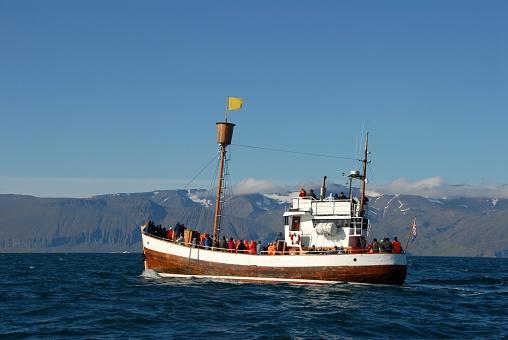 istock Whale watching in Husavik 116027823
