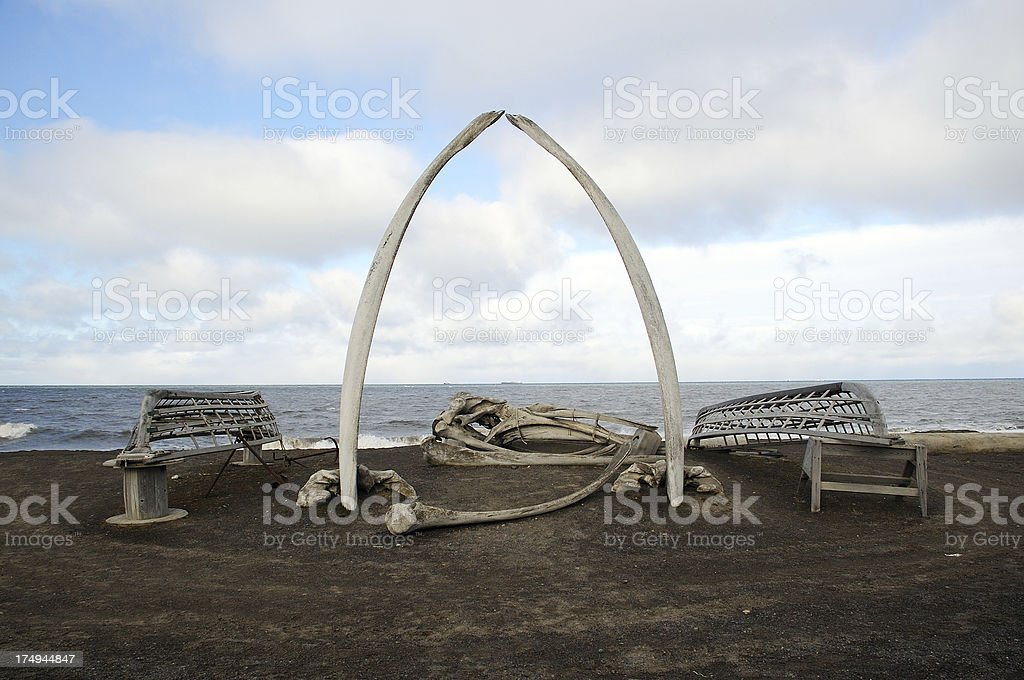 Whalebones & Boats stock photo