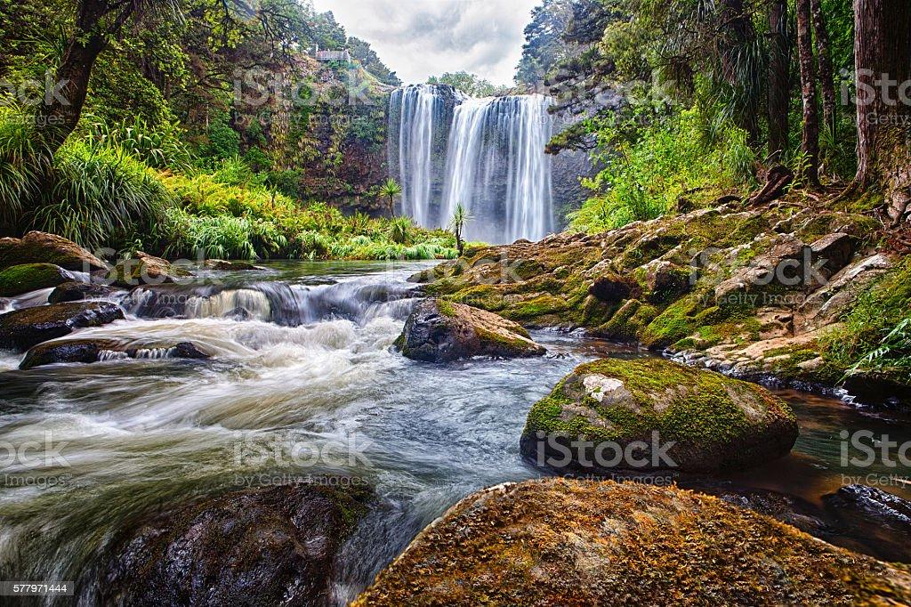 Whangarei waterfalls, New Zealand stock photo