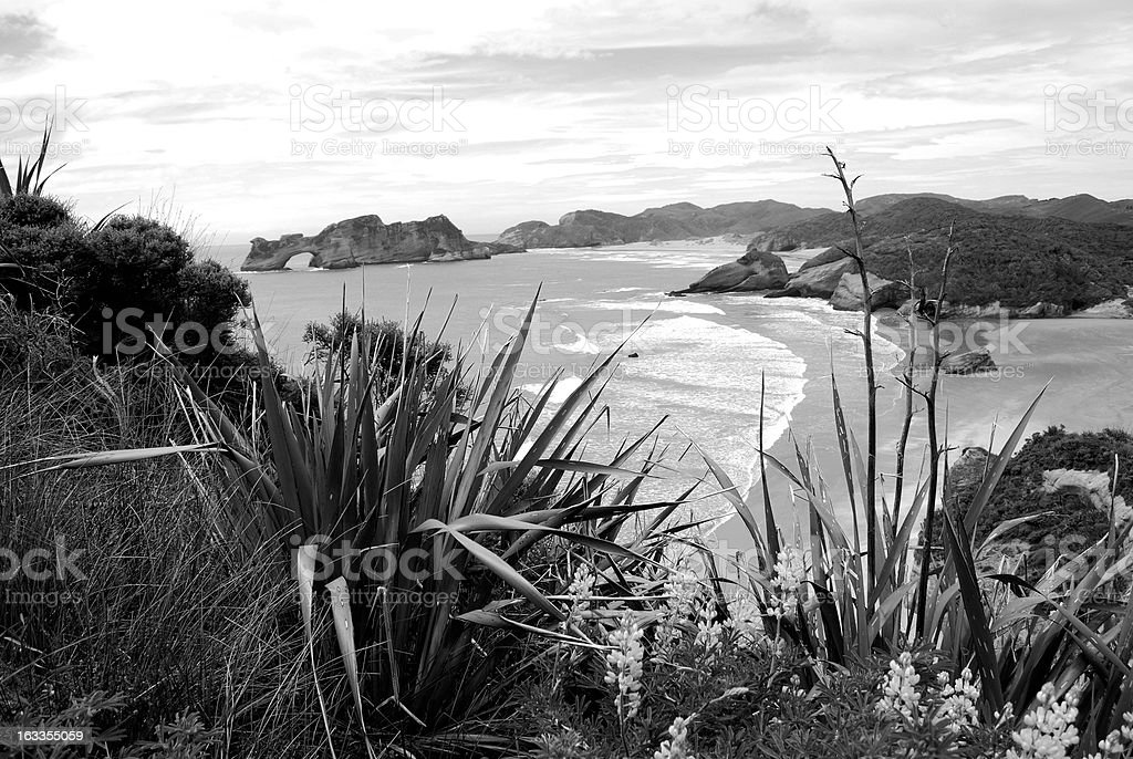 Wharariki Beach, Golden Bay, NZ royalty-free stock photo
