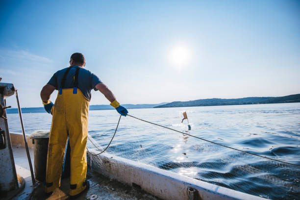 What am I gonna catch today? Fisherman putting the fishing net into the water. He is standing on his boat. Sun in back. fisherman stock pictures, royalty-free photos & images