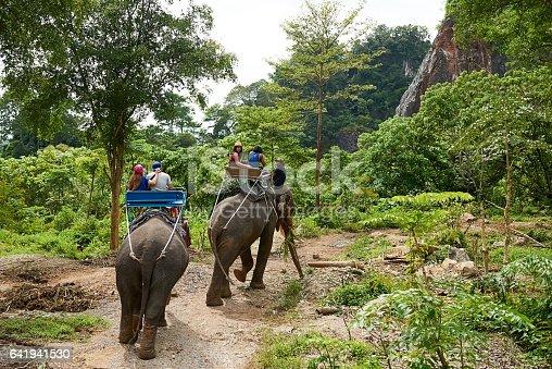 Shot of tourists on an elephant ride through a tropical rainforest