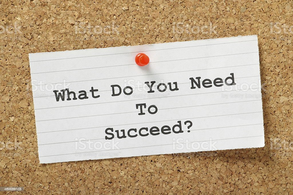 What Do You Need To Succeed? stock photo