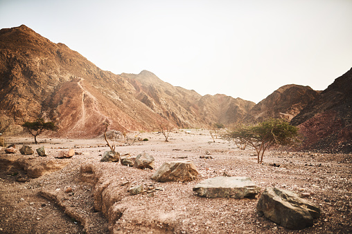 Shot of a dry area of deserted land