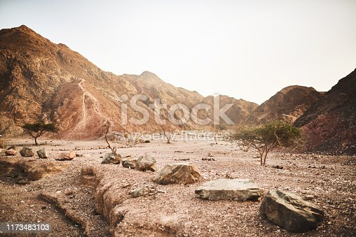 istock What happened to all the water? 1173483103