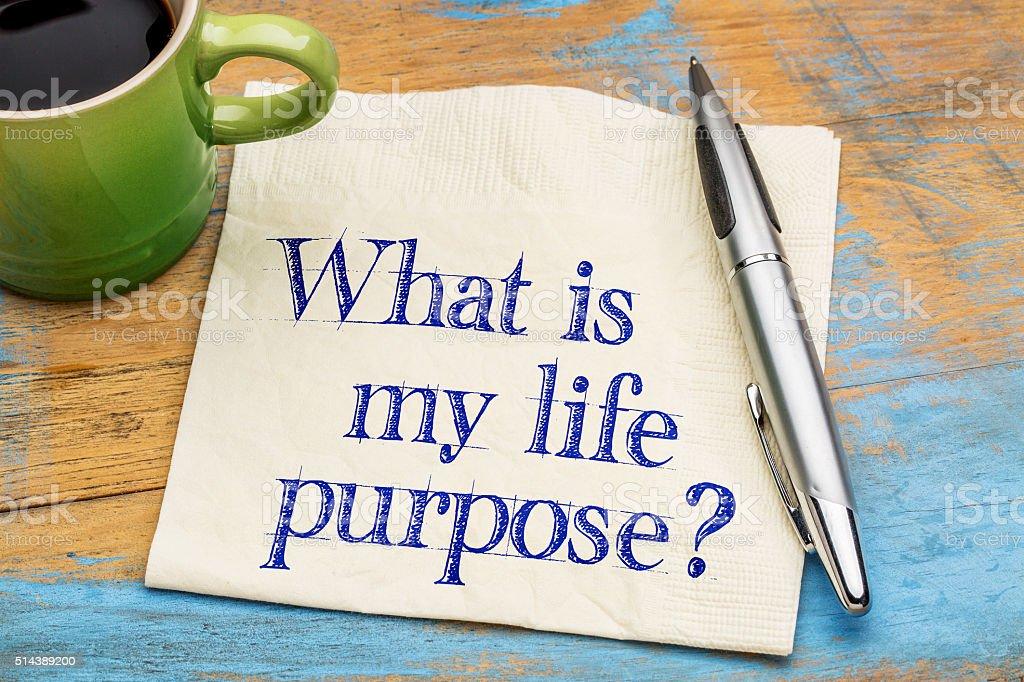 Was ist mein Leben Zweck? – Foto