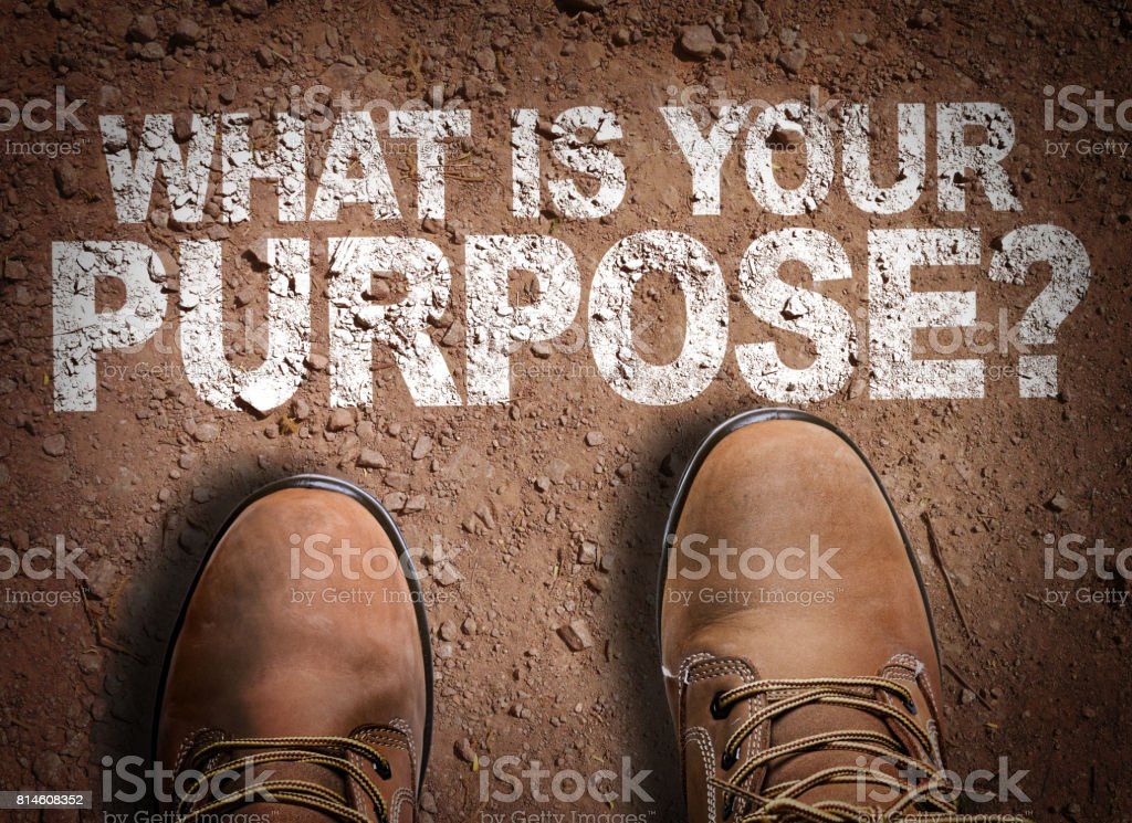 What is Your Purpose? stock photo