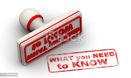 Red rubber stamp and red print WHAT YOU NEED TO KNOW on white surface. Isolated. 3D Illustration