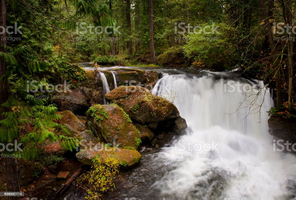 Whatcom Falls, Bellingham, Washington stock photo