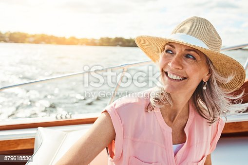 879618770 istock photo What's a vacation without a cruise? 879618536
