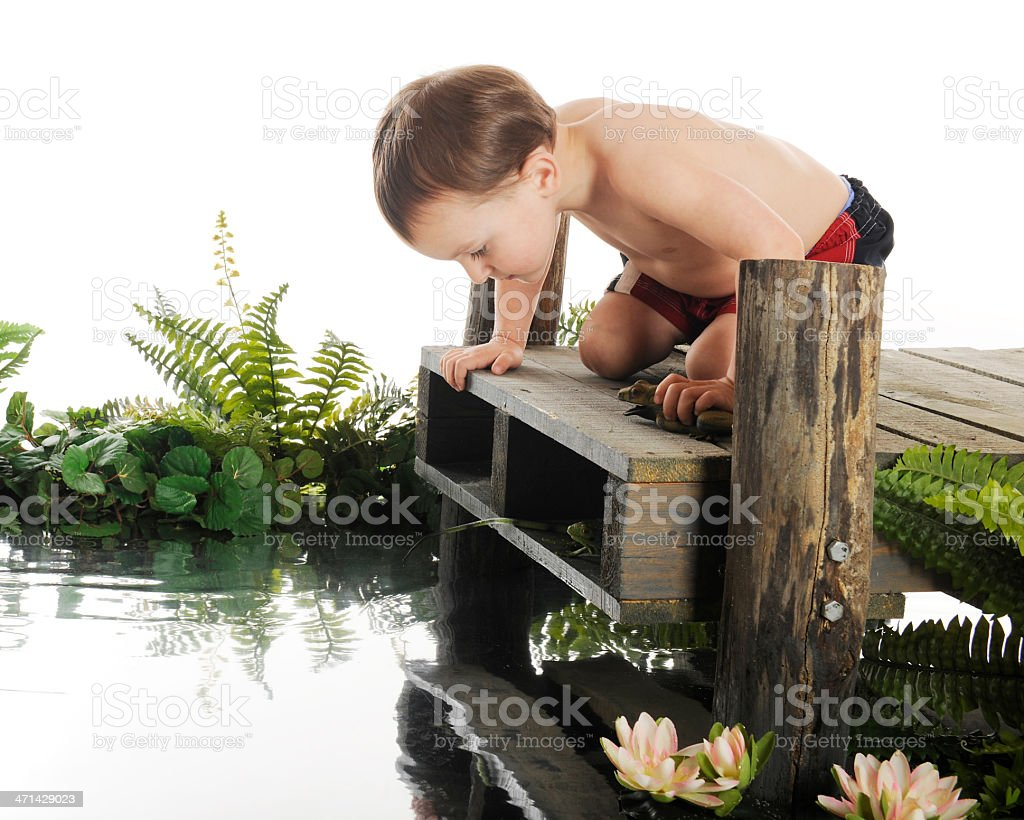 What's in the Water? royalty-free stock photo