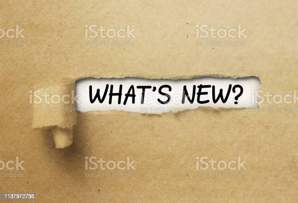 Whats new behind ripped curl paper picture id1137972735?b=1&k=6&m=1137972735&s=612x612&h=llxwixtgmnbr zxzvtlllvvu5zinqkkohaurbelm3b0=