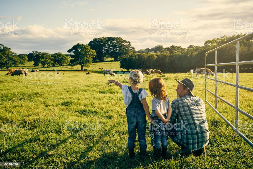 What's that one doing? stock photo