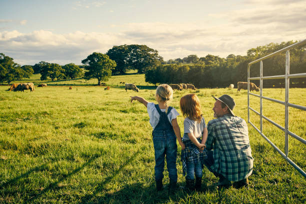 What's that one doing? Rearview shot of an handsome male farmer and his two kids on their farm ranch stock pictures, royalty-free photos & images