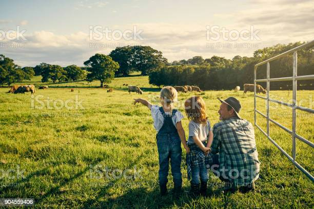 Rearview shot of an handsome male farmer and his two kids on their farm