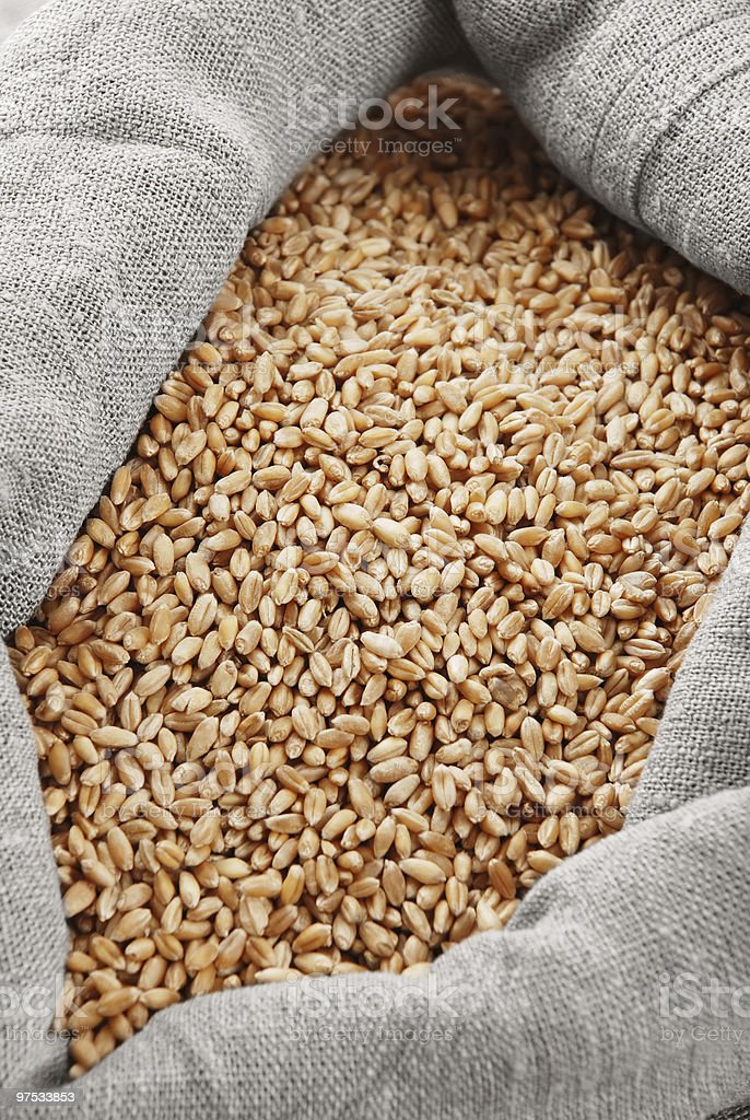 Wheat and bag with a grain royalty-free stock photo