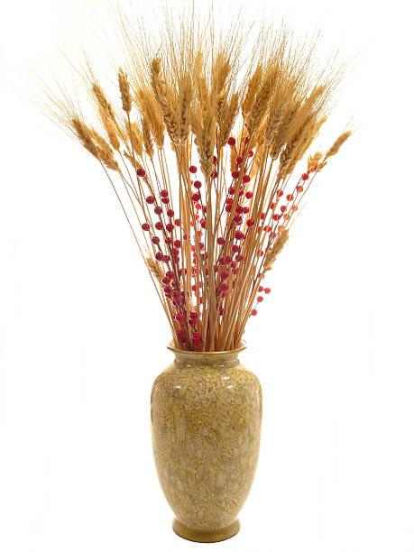 Wheat and Berries 01, stock photo