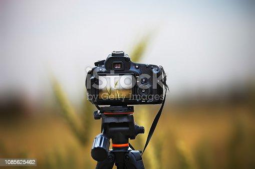 Digital camera capturing wheat crop field nature landscape during springtime.