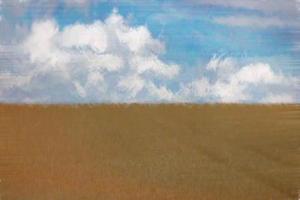 weizen feld im sommer  - farbfeldmalerei stock-fotos und bilder